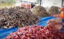 Ikan Asin Kuala Bubon Diminati Hingga Arab Saudi
