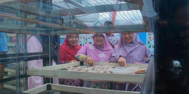 Kuala Bubon Akan Jadi Sentra Pengolahan Ikan Berbasis Teknologi